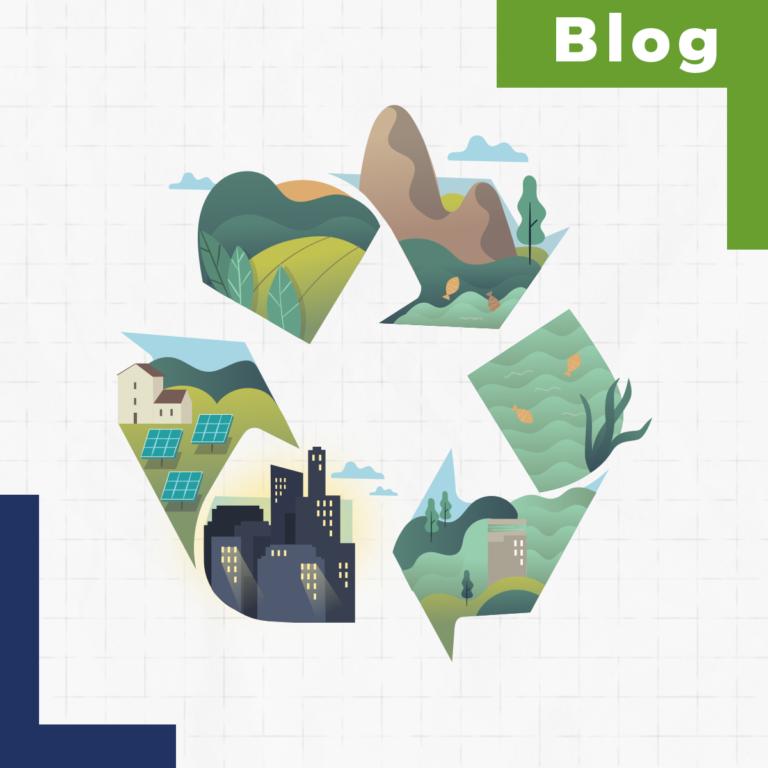 ¿Cuál es el contexto del reciclaje en el mundo? Diferencias con Argentina